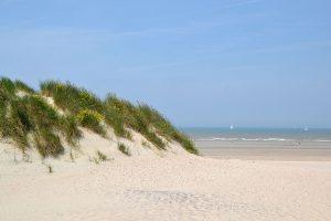 Westende duinen zee strand
